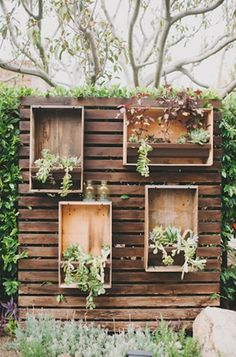 backdrop made of wooden boxes, plants, and clear bottles