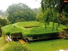 eco house that blends into environment while being functional with modern needs
