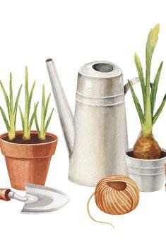 Ausgeizen, Bodenmüdigkeit oder Chlorose Im ABC der Gärtnerin findest du gärtnerische Fachbegriffe - ganz einfach erklärt. Das Abc, Canning, Simple, Home Canning, Conservation