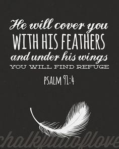 He will cover you in his feathers & under his wings you will find refuge.  - Psalm 91:4   Bible Verse
