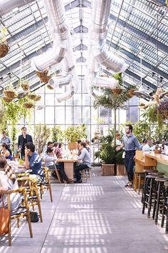 LA restaurant, greenhouse vibe