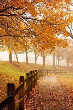 https://www.facebook.com/AutumnBlessings26/photos/a.535660096593136.1073741828.535650206594125/788455774646899/?type=3