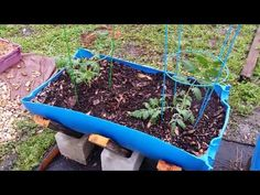 Easy cheap diy vegetable container garden (Interesting, unique... love the support system... food grade containers! Deb)