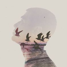 Brandon Kidwell A Level Photography, Double Exposure Photography, Photography Challenge, World Photography, Dance Photography, Creative Photography, Amazing Photography, Contemporary Photographers, Digital Image