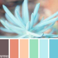 Sweet Succulent #patternpod #patternpodcolor #color #colorpalettes  Szoba