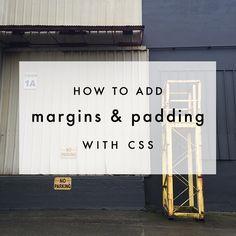 CSS Basics: Margins & Padding | The Blog Market