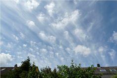 Altocumulus virga - Clouds Online