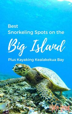 Big Island Snorkeling Spots (Plus Kayaking Kealakekua Bay Best Big Island Snorkeling Spots Hawaii Lanai Island, Big Island Hawaii, Island Beach, Island Girl, Best Island Vacation, Hawaii Vacation, Beach Vacations, Dream Vacations, Bora Bora