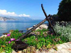 Tips for visiting Lokrum Island in Dubrovnik, Croatia
