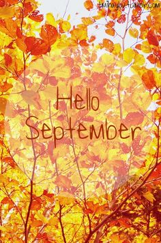 Daydreaming Welcome, September!