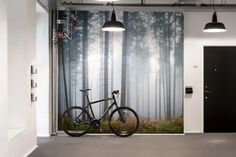 Soft light forces its way between the tree trunks in a delicate pattern creating depth. Choose this wall mural for your home and feel how the forest m Zen, Tree Trunks, Wallpaper Online, Aarhus, Designer Wallpaper, Decoration, Wall Murals, Mists, Image