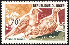 Chestnut-bellied Sandgrouse stamps - mainly images - gallery format