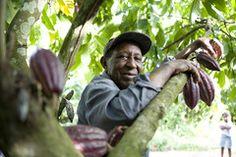 Fairtrade International / Producers / Meet the producers / Meet the producers details