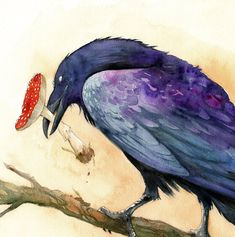 "Big-Raven said, ""Let the Agaric remain on earth, and let my children see what it will show them."