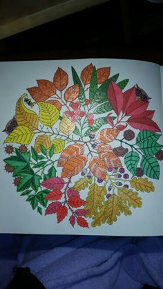 Adult Coloring Secret Garden Book