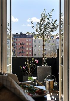 Outside patio with trees and plants urban city living on balcony with sunlight