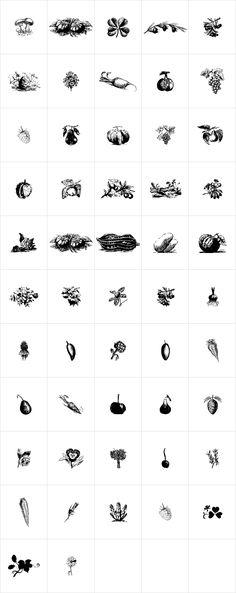 Naturella by Intellecta Design - Desktop Font, WebFont and Mobile Font - YouWorkForThem