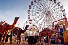 Pushkar Mela (Fair) in Rajasthan Tour