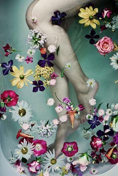 Flower bath, photograph by Andrea Huebner