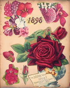 Victorian Scrapbook Flowers, 1898