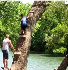 tree ladder to use the rope swing far out over the water- sometimes the quickest, simplest solutions have the best effect and most charm. Random boards nailed to trunk