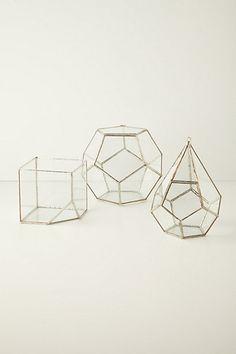 Terrarium Kit #anthropologie