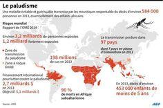 http://img.20mn.fr/wyLYuIkvS22ngoP2eqfc4w/561x0_carte-mondiale-pays-plus-touches-paludisme-suite-a-publication-rapport-oms-2013