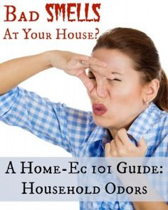 Guide to Household Odors