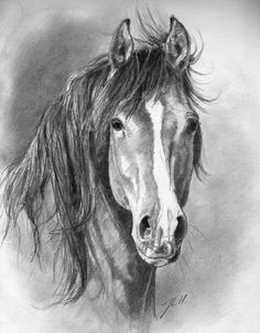 Horses in Art & Pictures :-) - Kunst & Pferde - 3d Pencil Sketches, Pencil Drawings Of Animals, Pencil Drawing Tutorials, Horse Drawings, Art Drawings, Drawing Tips, Drawing Ideas, Horse Pencil Drawing, Realistic Animal Drawings