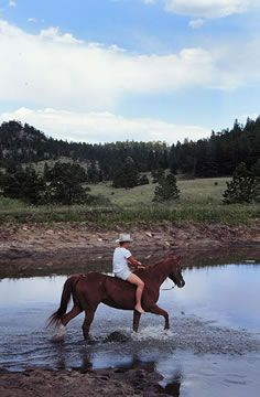 Our Ranches Colorado Dude Ranch Association In Vacation 2018 Vacations And