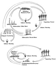 Model of the Bronfenbrenn's ecological systems theory