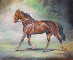 """""""Ghost"""" -- an amazing Morgan horse;   Note cards and greeting cards are now available."""