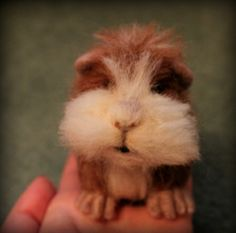 Needle felted guinea pig tutorial. How to make a gorgeous guinea pig by 'Fit to be loved'
