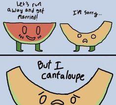 sorry I cantaloupe