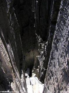 Tsingy stairs (Tsingy de Bemaraha)