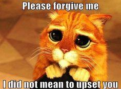 """Please Forgive Me"": The Upside ofGuilt - | - Science of Relationships"