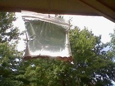 Picture of How to Keep Pesky Flies Away From Your BBQ