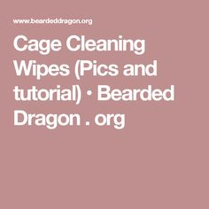 Cage Cleaning Wipes (Pics and tutorial) • Bearded Dragon . org