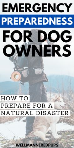Emergency preparedness for dog owners: How to prepare your dog for a natural disaster. Natural Disasters, Emergency Preparedness, Dog Owners, Good To Know, Your Dog, You Got This, Pup, Wellness, How To Get