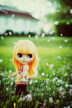 Raining blossoms - blythe - Shannon Taylor