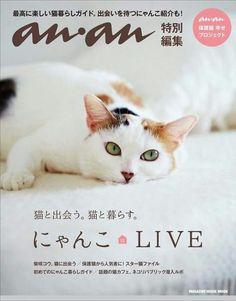 【情報解禁!!!】 あの!ananから保護猫ムック本が2/22 にゃんにゃんにゃんの猫の日に発売されます!  しかも表紙は、先日卒業いたしました「玉川ヨシ子」さんです!  白猫王子として覚えていらっしゃる方も多いだろう「稲穂」くんと、くねくねスリゴロの「フィリ」ちゃんの里親さんのインタビューも掲載されてます。  ほかにもネコリパの子たちが盛りだくさん!  保護猫を迎えることを文化にすべく、ananのみなさまにも多くのご協力をいただき完成した本です。 ネコリパの想いを詰め込みました!  さっそくAmazonで予約開始してますので、ぜひポチッとお願いします。 https://rcm-fe.amazon-adsystem.com/e/cm?t=necorepublic-22&o=9&p=8&l=as1&asins=483875180X&ref=tf_til&fc1=000000&IS2=1&lt1=_blank&m=amazon&lc1=0000FF&bc1=000000&bg1=FFFFFF&f=ifr  ネコリパ店頭でも販売予定です!