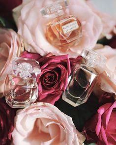 Elie Saab and roses Looking Gorgeous, Elie Saab, Roses, Wedding Rings, Engagement Rings, Flowers, Instagram, Enagement Rings, Pink