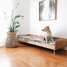 Dog bed by the hubby of @greenbody_greenhome