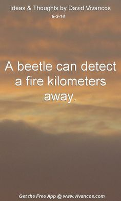 "June 3rd 2014 Idea, ""A beetle can detect a fire kilometers away.""  https://www.youtube.com/watch?v=WMnDyRqs9Pg #quote"