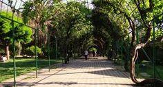el parque juan 23 en nuñoa, santiago
