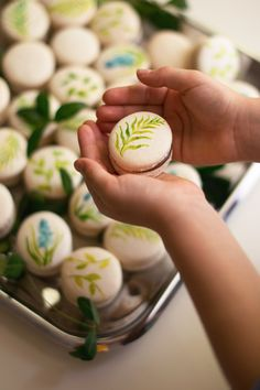Hand Painted Macarons Spring