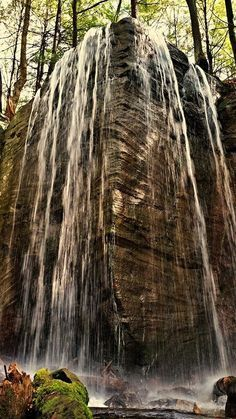 Hector Falls, Allegheny National Forest. https://www.alleghenyoutfitters.com/blog/2016/12/27/allegheny-national-forest-waterfall-day-trip
