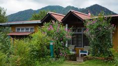 The Ramgarh Bungalows, Nainital, are colonial bungalows located in the picturesque state of Uttarakhand. Bungalow Resorts, Heritage Hotel, Historical Architecture, Bungalows, Hotels And Resorts, Nainital Uttarakhand, 19th Century, Photo Galleries, Cabin