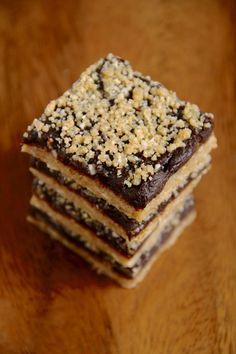 No Bake Vegan Oatmeal Fudge Bars - a healthier take on traditional fudge bars, using dates, cocoa powder, and coconut oil! || runningwithspoons.com #glutenfree #vegan #bars