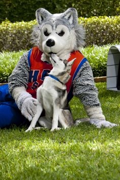 19 Best Hbu Images On Pinterest Colleges Houston And University